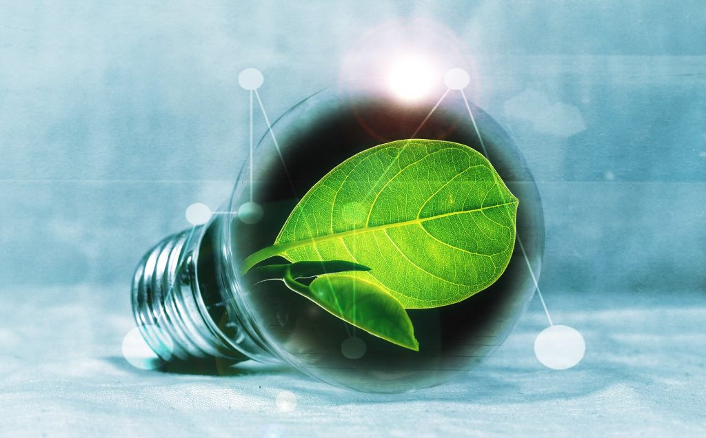 Photo of leaf in light bulb symbolising the green revolution